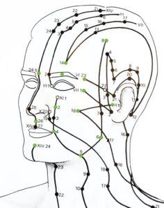 gellis facial acupuncture meridians