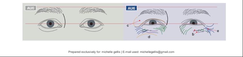 eye action units
